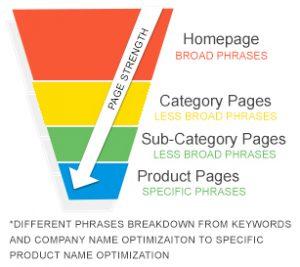 Magento SEO (Search Engine Optimization) - Triangle Direct Media